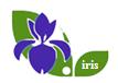 Udruga IRIS